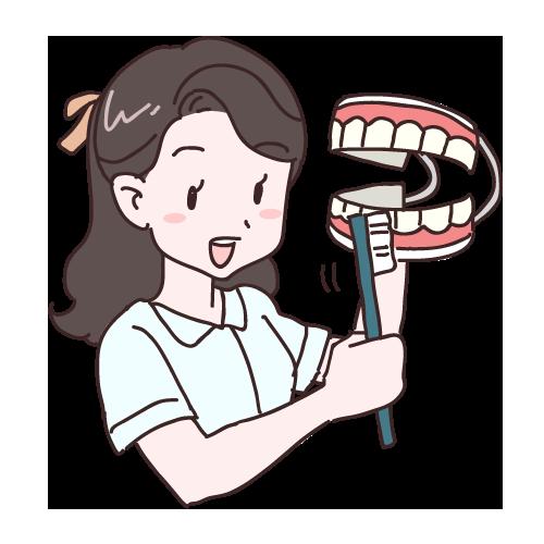 小児歯科について①