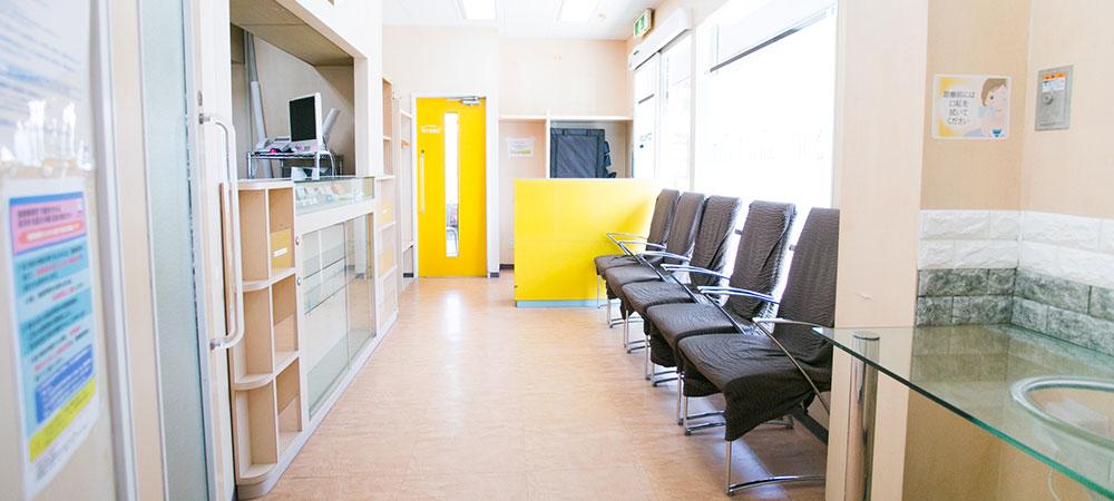 予防歯科を受診